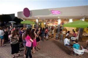 Fast Growing Frozen Yogurt Franchise